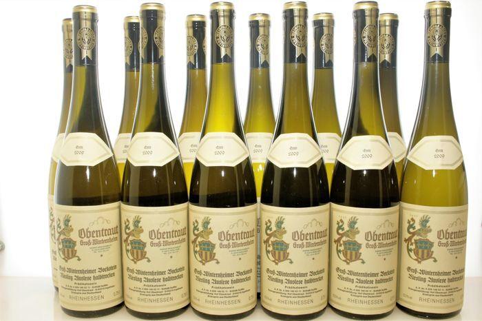 2009 Riesling Auslese halbtrocken (halfdroge) Weingut Hof Obentraut Groß-Winternheimer Bockstein - 12 flessen (0 75l)  Gelieve te controleren onze andere aanbiedingen met zeldzame wijnen van hoge kwaliteit. Onze aangeboden wijnen worden perfect opgeslagen in een gewelfde kelder koel donker en met een hoge vochtigheidsgraad.In deze veiling bieden we:12 flessen2009 Groß-Winternheimer Bockstein Riesling Auslese halbtrocken (halfdroge) 0 75lWeingut Hof ObentrautIngelheim - Rheinhessen…