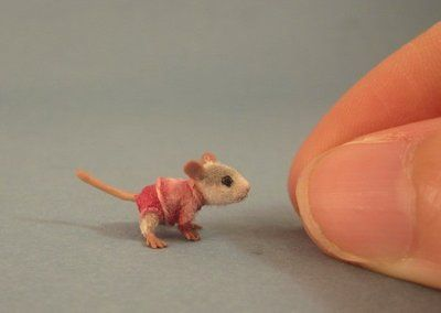 I can't believe how tiny this sculpt is!!!!    Miniature Baby mouse hand made by Aleah Klay