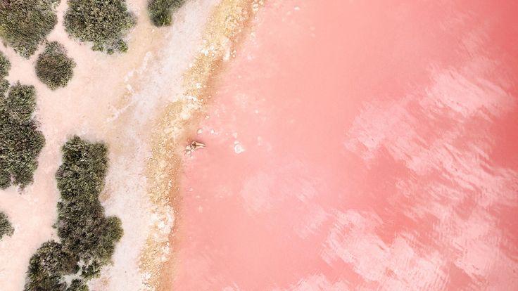 New Cute Rose Gold Wallpaper | Best HD Wallpapers 2