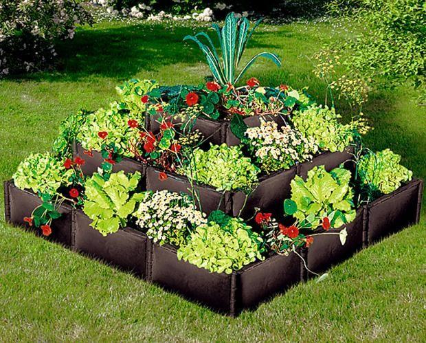 8 besten Obst und Gemüse Garten Bilder auf Pinterest Gemüse - gemusegarten anlegen pflanzplan