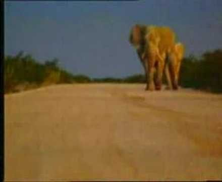 A fantastic video I've ever seen of my beloved South Africa