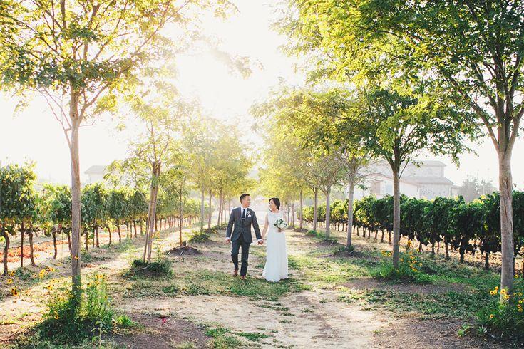 Jacuzzi-Winery_Sonoma_Wedding-22.JPG