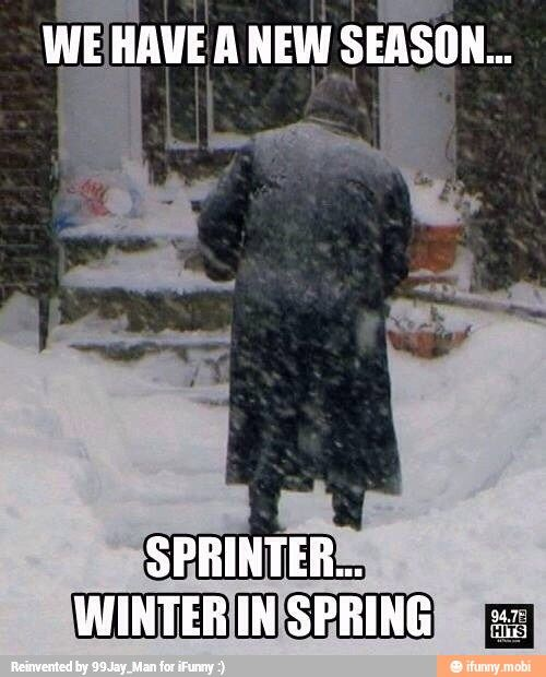 Friday Funny Quotes Winter Humor: 25+ Best Ideas About Cold Weather Funny On Pinterest