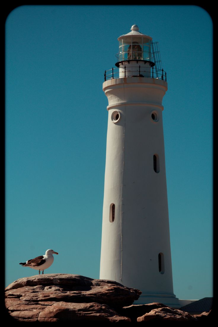 .l - lighthouse at Cape St. Francise, South Africa.