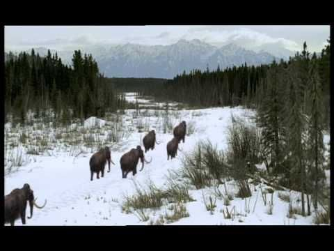 BBC Documentary Walking with Beasts (6-6) - Mammoth Journey