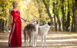Women with animals dogs hd wallpapers free download for background of desktop laptop ipad led and lcd.