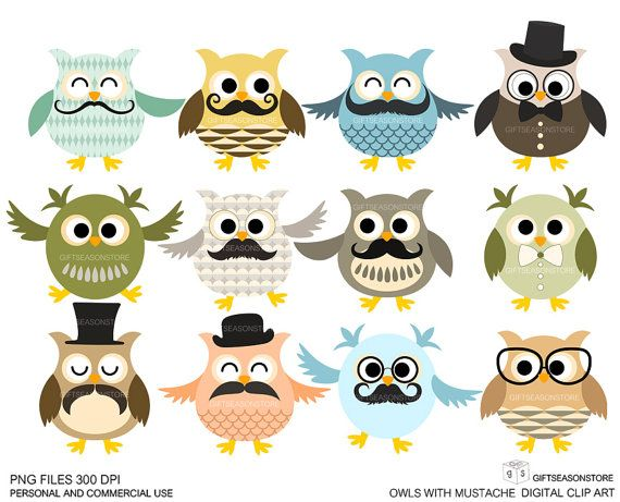 12 Owls with mustache Digital clip art for Personal and Commercial use - INSTANT DOWNLOAD via Etsy