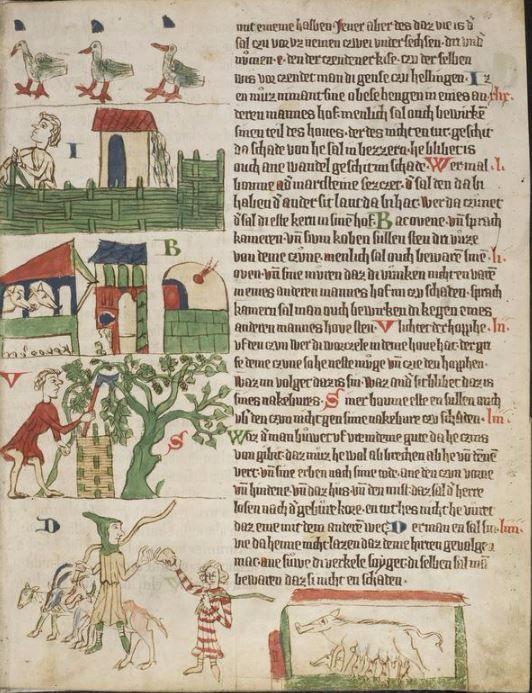 Eike <von Repgow>   Heidelberger Sachsenspiegel — Ostmitteldeutschland, Anfang 14. Jh. Cod. Pal. germ. 164 Folio 8r