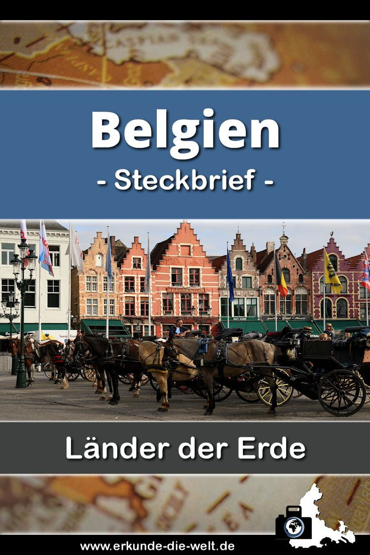 Alles Wissenswerte und Spannendes über Belgien in einem übersichtlichen und kompakten Steckbrief - Tipps für Ausflüge, Hinweise zu landestypischen Gerichten, Sehenswürdigkeiten und Informationen zum besten Reisewetter inklusive!