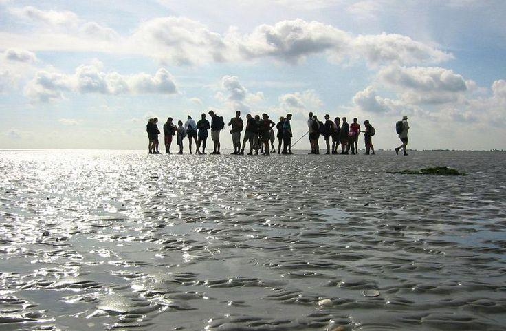 Hay un mar en Europa que dos veces al día, cuando la marea baja, desaparece prácticamente por completo, permitiendo caminar sobre el fondo arenoso donde las aguas retornarán cuando la marea sube. No es que sea un gran mar, pero tampoco es pequeño.  Se trata del Mar de Frisia (que en la propia leng