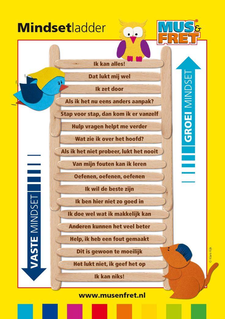 Mindset ladder - Poster Mus en Fret