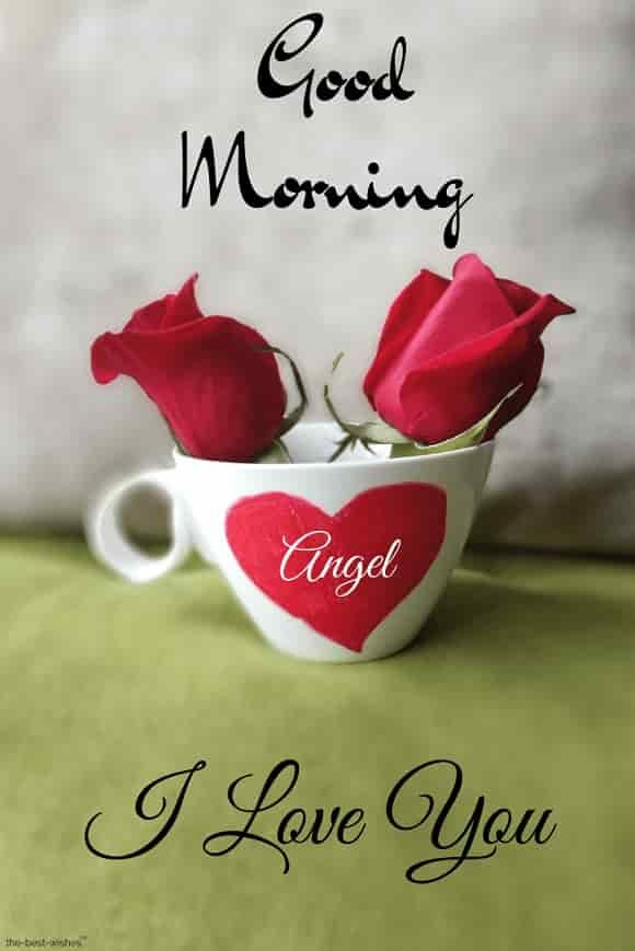 Good Morning Angel I Love You Pic With Red Roses Good Morning