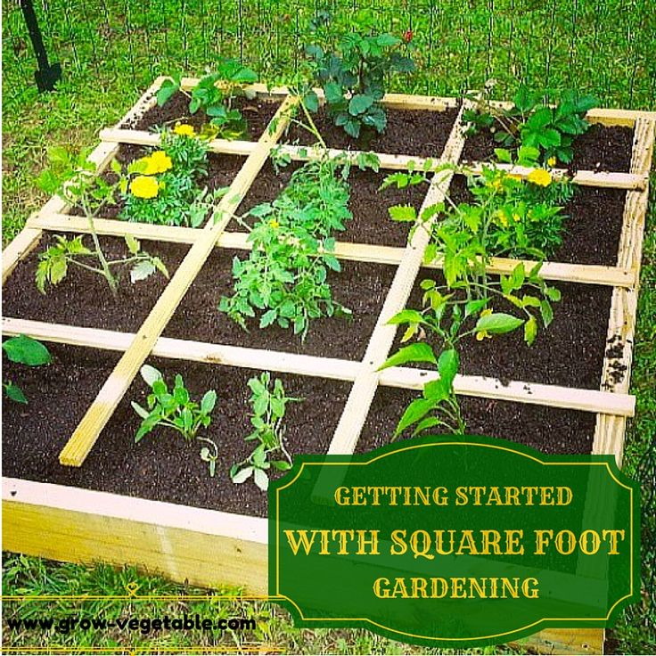 36 best images about vegi fruit garden ideas on for Square foot garden designs