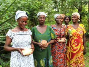 Sharing and saving seed is a crucial part of traditional farming all over Africa, writes Heidi Chow. Maybe that's why governments, backed by multinational seed companies, are imposing oppressive seed laws that attack the continent's main food producers and open the way to industrial agribusiness. But Ghana's women farmers are having none of it.