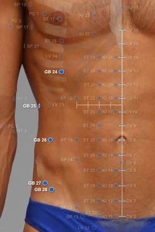gb 24 acupuncture point ile ilgili görsel sonucu   TCM 23