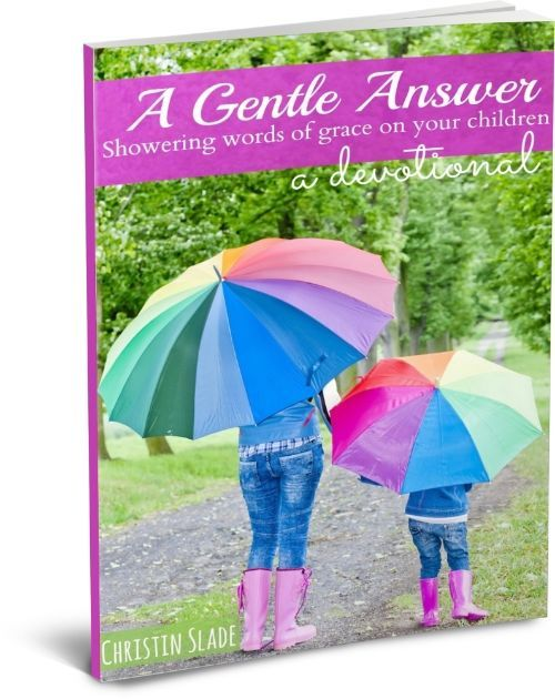 Do you struggle with keeping a loving tone and handling anger toward your children? This little devotional offers spiritual and practical steps to responding with a gentle answer.