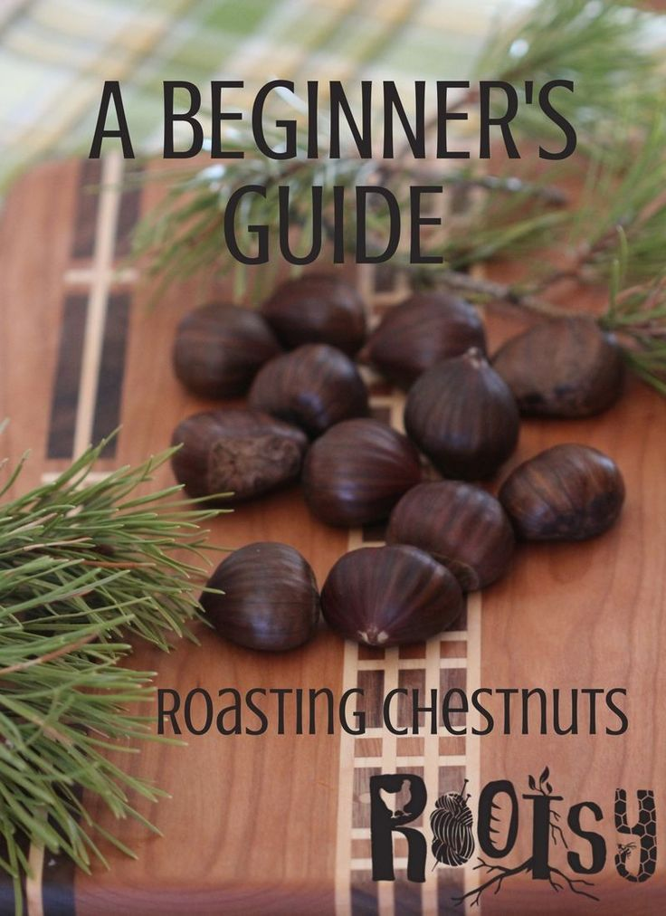 A beginner's guide to roasting chestnuts. Learn how to roast chestnuts for a festive holiday treat!
