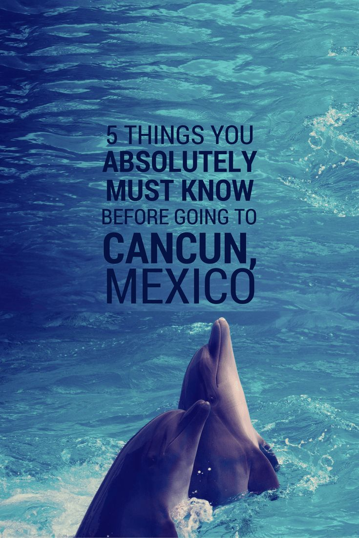 The Wild Heart Travels - Cancun