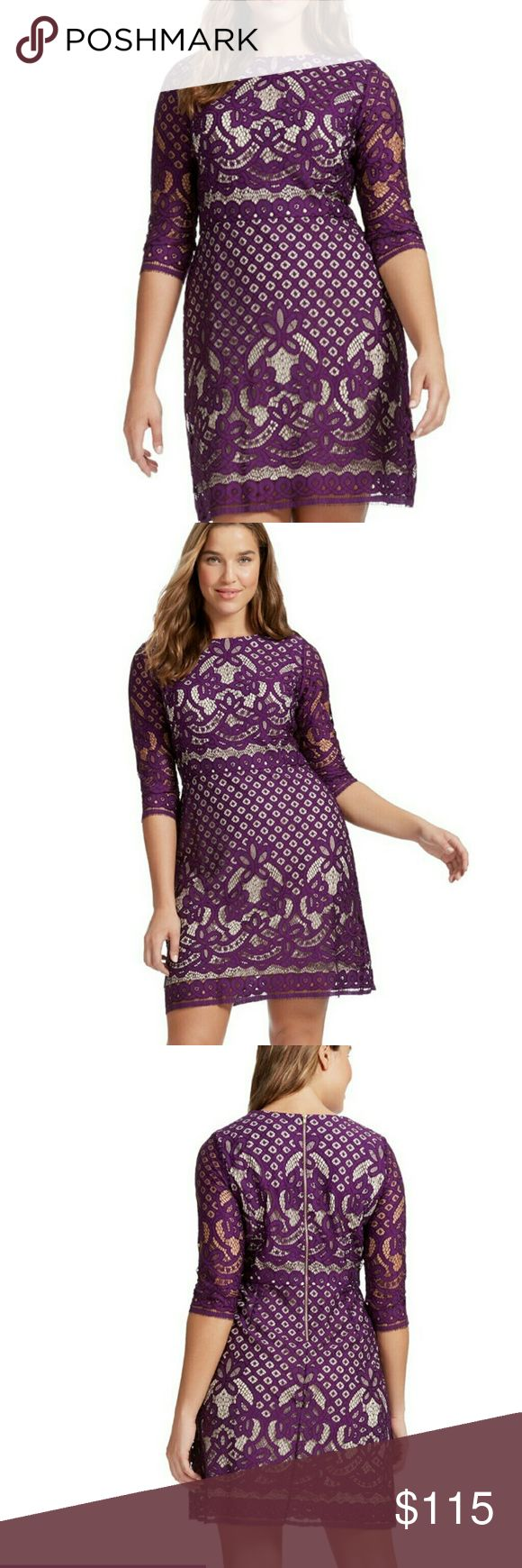 Gabby Skye - Purple Lace Dress Lace shift dress with scoop neck and 3/4 sleeves, no stretch, exposed back zip, set in Waist, lined. Gabby Skye takes feminine lace to a new level with this ultra-feminine shift dress and Vivid purple. A fitted silhouette and gentle flare make it a flattering favorite for work or weekend occasions. Nylon / Cotton 7550 Gabby Skye Dresses Midi