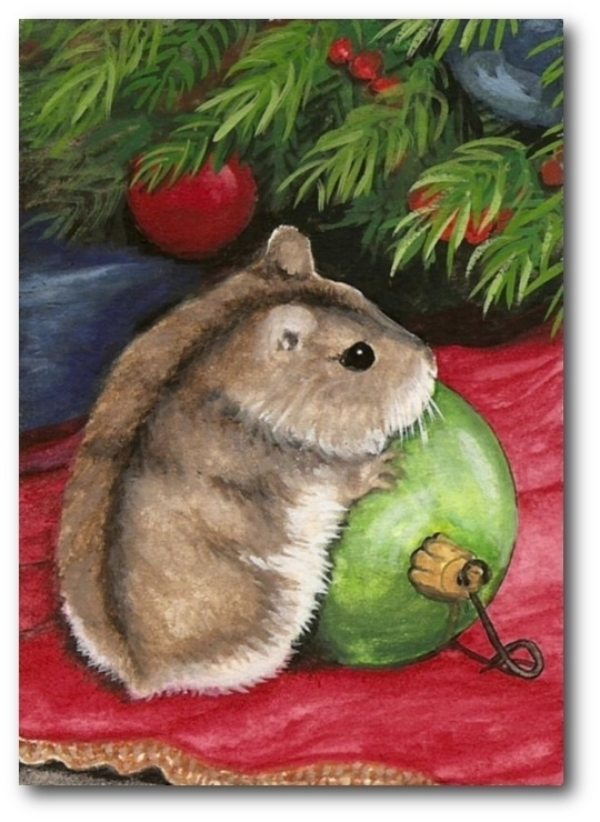 84 best Hamsters images on Pinterest | Pets, Dwarf hamsters and Rodents