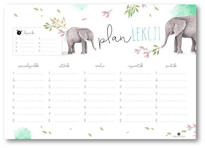 Plan lekcji ze słoniem