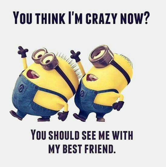Minions I M Not Crazy Quote: 173 Best Images About Minion Quotes On Pinterest