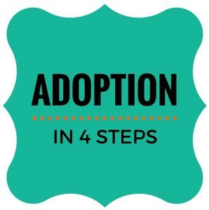 A simple look at the domestic infant adoption process in 4 steps! #adoption #momblog #infantadoption