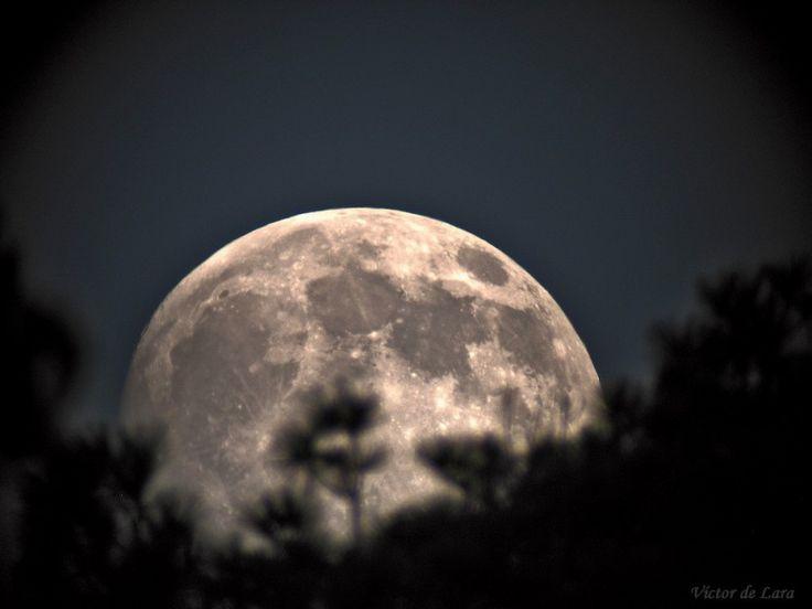 Aprende qué actividades puedes hacer en luna llena, creciente, nueva y menguante.