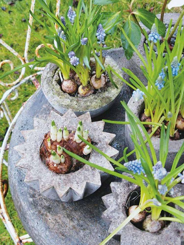 déco de jardin en béton - réaliser des pots à fleurs en forme d'étoile