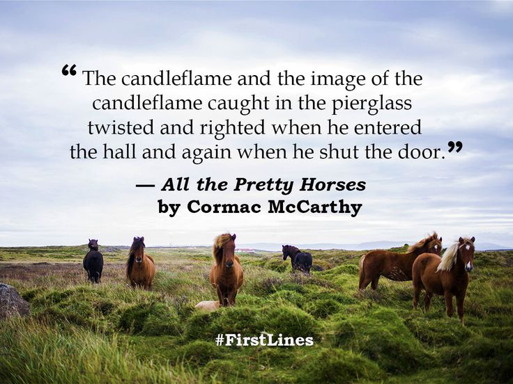 best first lines images master s degree masters  cormac mccarthy s novel all the pretty horses essay expert