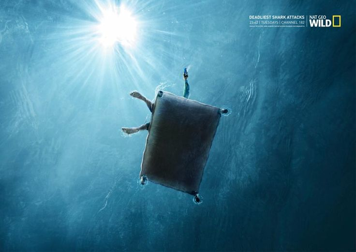 "National Geographic Tv Channel: ""Deadliest shark attacks, 2"" Print Ad  by Ireland/Davenport"