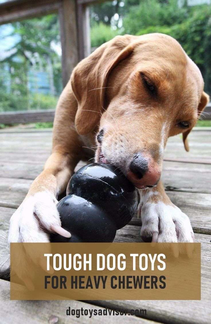 Pin On Best Dog Toys