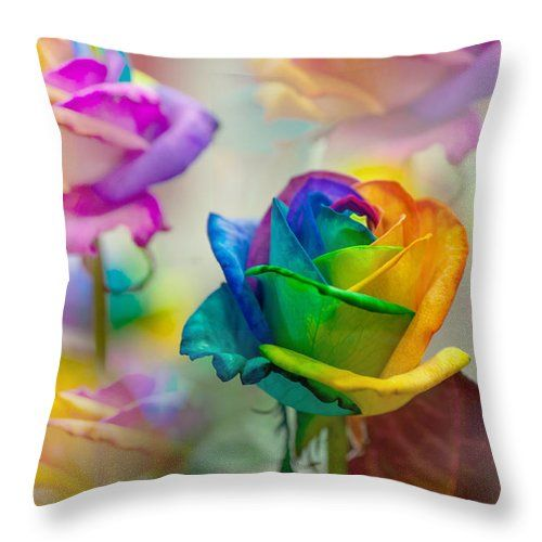 Rose Throw Pillow featuring the photograph Dreams Of Rainbow Rose by Jenny Rainbow