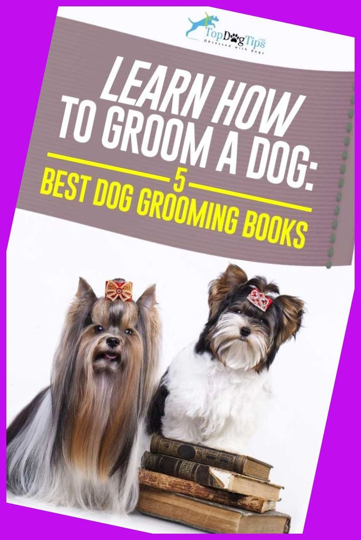 how much to tip dog groomer at petco