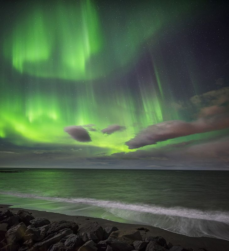 Northern Lights tour in Iceland with Gray Line