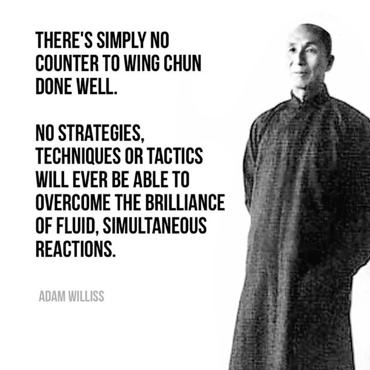 """There's simply no counter to Wing Chun done well. No strategies, techniques or tactics will ever be able to overcome the brilliance of fluid, simultaneous reactions."" - Adam Williss 