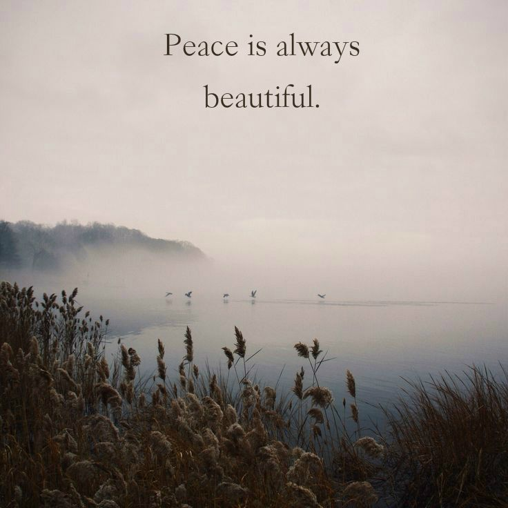 """Peace is always beautiful.""  ― Walt Whitman, Leaves of Grass.  Click on this image to see the most sophisticated collection of inspiring quotes!"