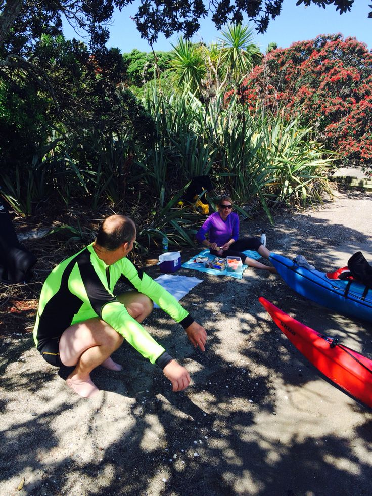Kayaking Auckland tamaki estuary