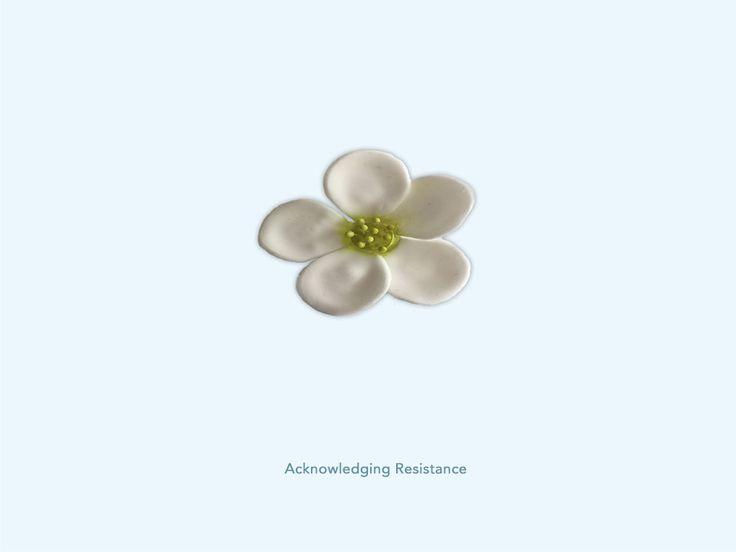 Acknowledging Resistance - Steenbreek