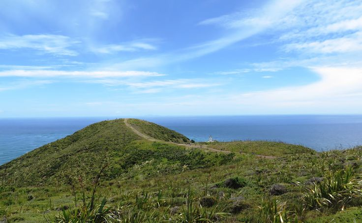 Journey to the top of New Zealand - Cape Reinga