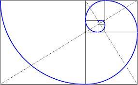 Resultado de imagen de espiral de fibonacci