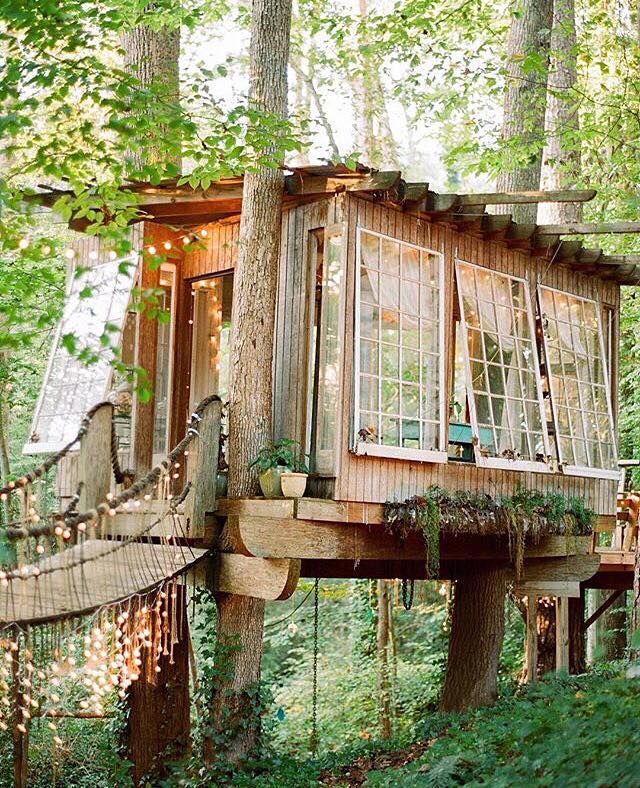 tree house masters completely and totally awesome the lights wood design and