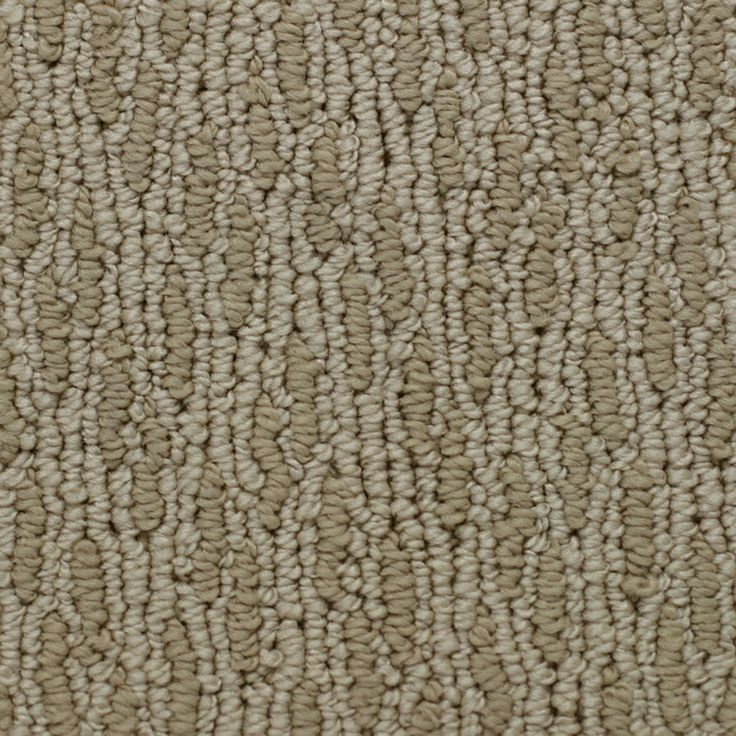 Shop Lexmark Carpet Mills Cordova Sandstone Multi Level