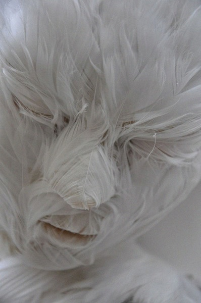 feather child (by lucy glendinning) [white sculpture]