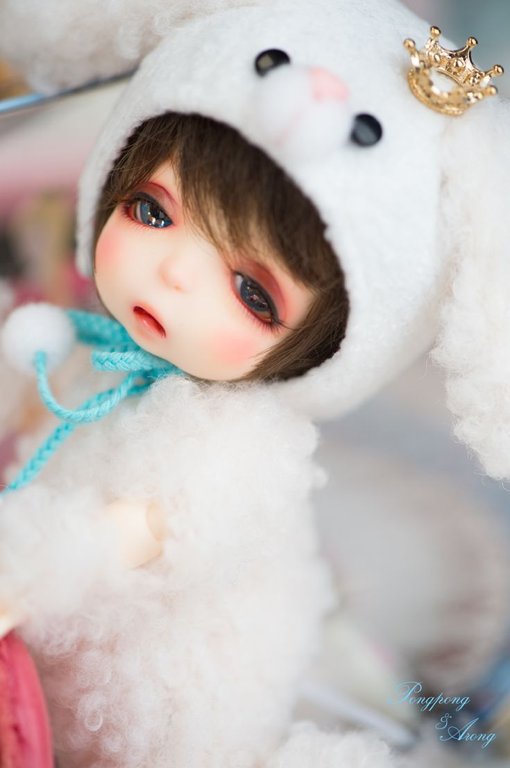 [Limited]pukiFee Arong Full Package(Dear My Puppy)   Dolk Station - Online bjd shop