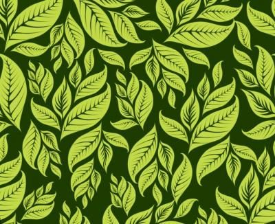 Backgrounds - Green Floral Pattern