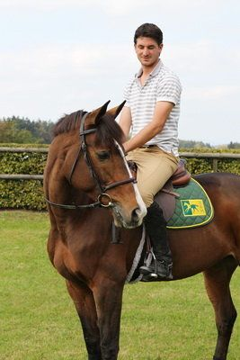 Steve Guerdat - TRM Sponsored Rider Leading Swiss Showjumper, Olympic Medallist 2012