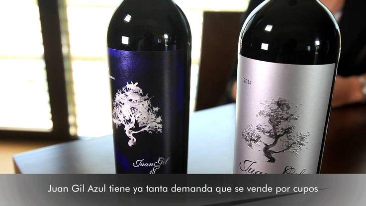 Juan Gil Etiqueta Azul y Etiqueta Plata - Todovino