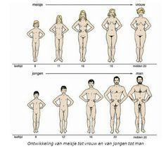 Puberteit is de ontwikkeling op biologisch vlak.