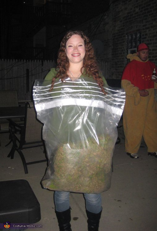 bag of weed costume homemade halloween costumes and funny. Black Bedroom Furniture Sets. Home Design Ideas